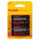 бат. Kodak R20 BL2 [2/24/120]