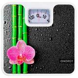 ENERGY ENМ-409D Весы напольные механические, Максимальная нагрузка 120 кг [1/12]
