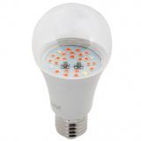 - ЭРА FITO-10W-RB-E27 FITO Лампы тип цоколя E27 [1/36?]